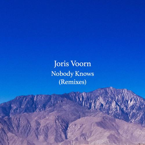 Joris Voorn Nobody Knows Remixes